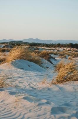 Dune di sabbia in Sardegna